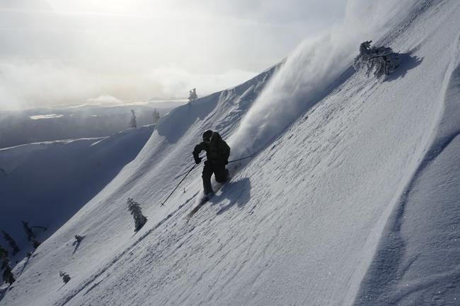 Backcountry skiing Shasta-Trinity National Forest